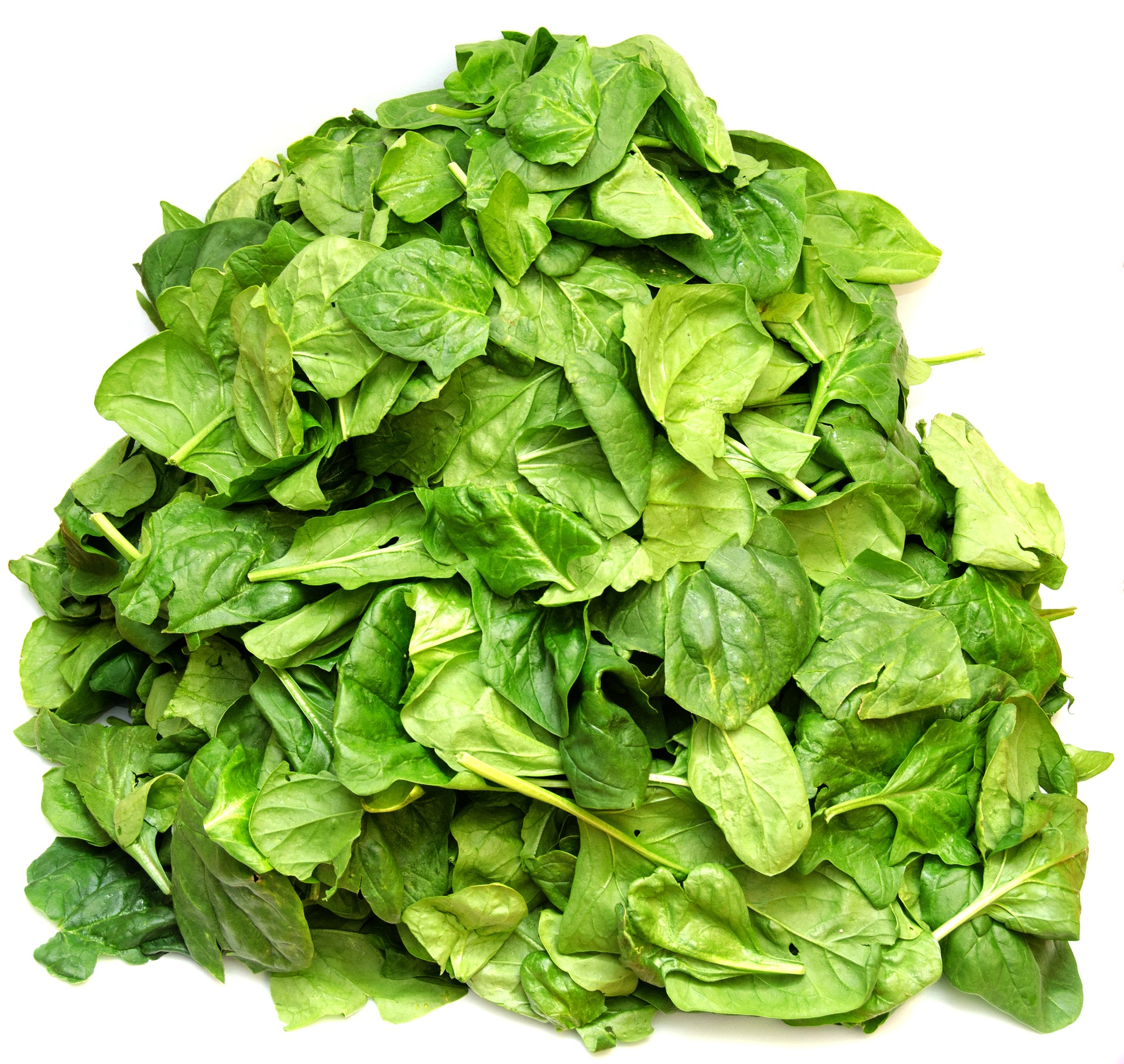 spinach1799266_1920